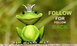 Why Instagram follow for follow still works in 2020 (+Best Apps)