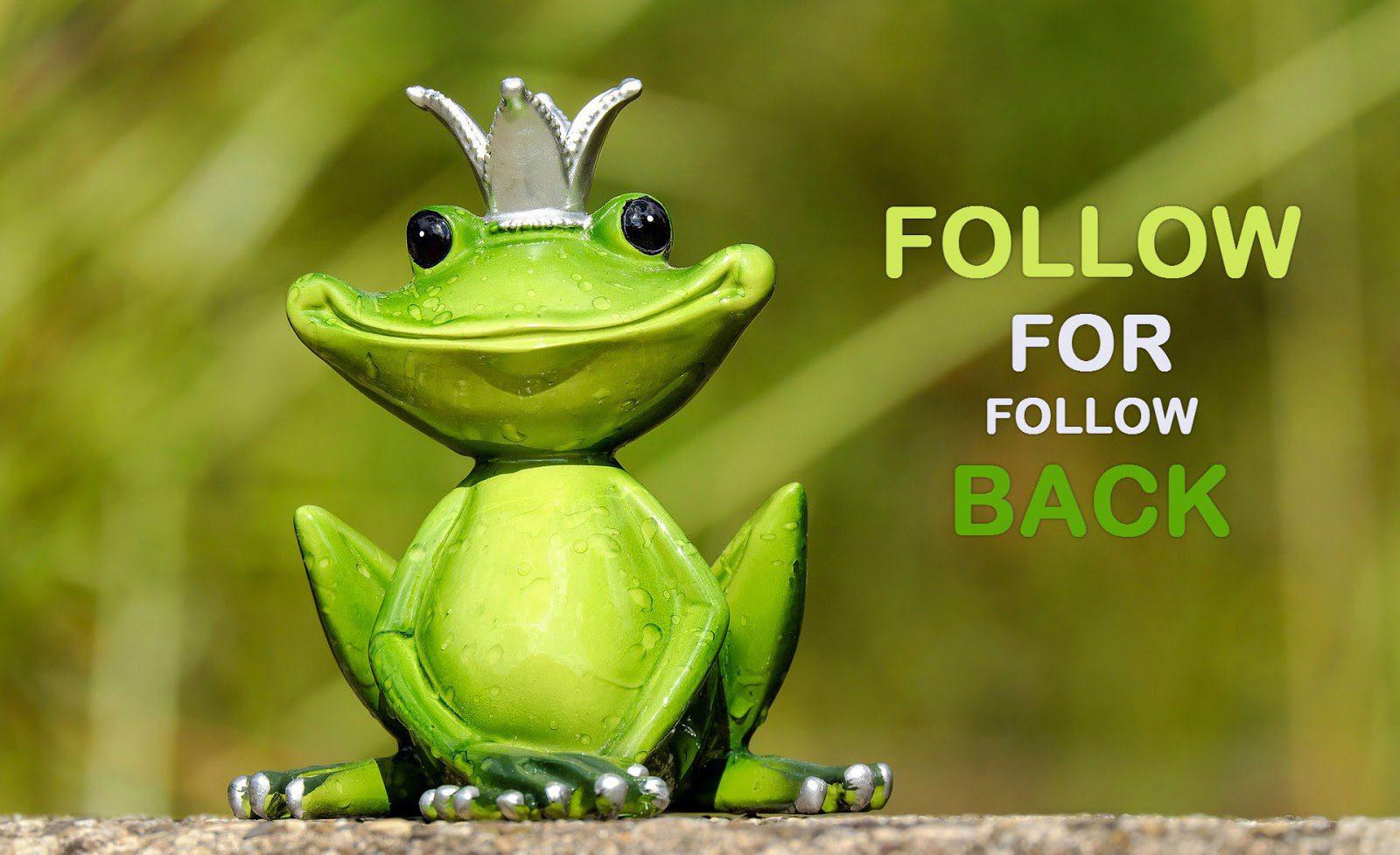 Instagram follow for follow