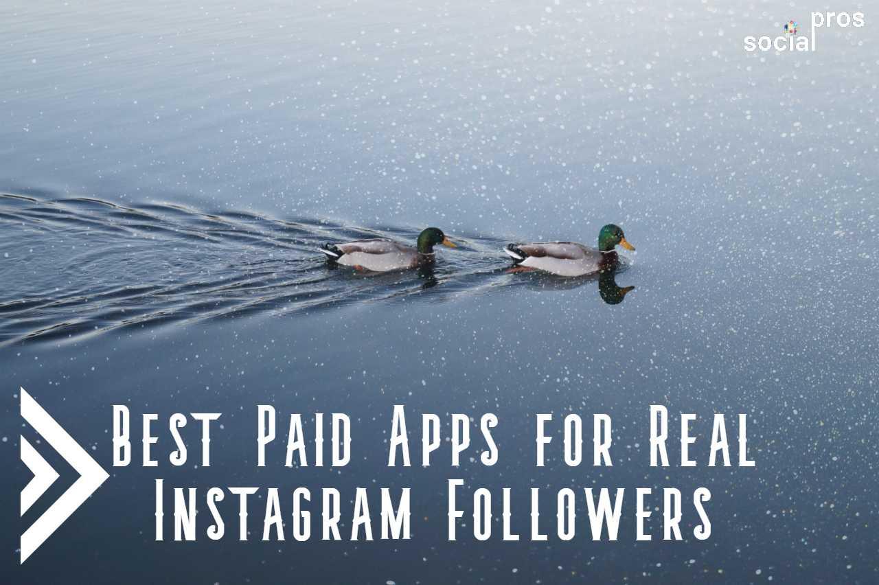 5 Best Paid Instagram Followers Apps to Trust in 2020